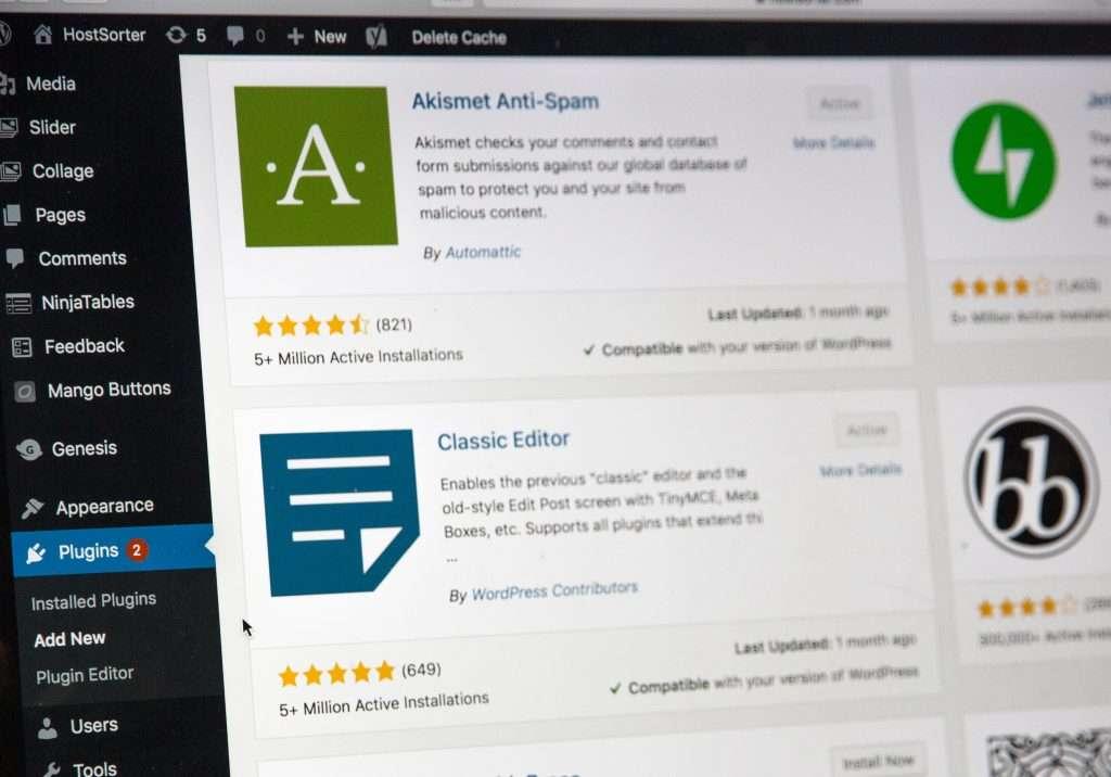 WordPress for websites